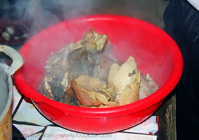 dog lungs and head cooked - thịt chó - vietnam, cooked dog, dead dog, dog meat, food dog, lungs