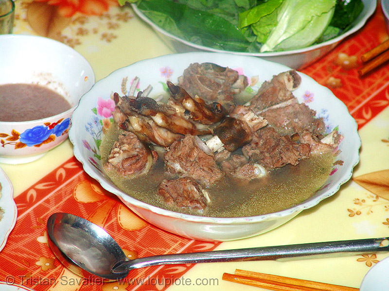 dog meat dish - dog legs and paws stew - thịt chó - vietnam, cooked dog, cooked paws, dish, dog paws, food dog, meat, stew, vietnam
