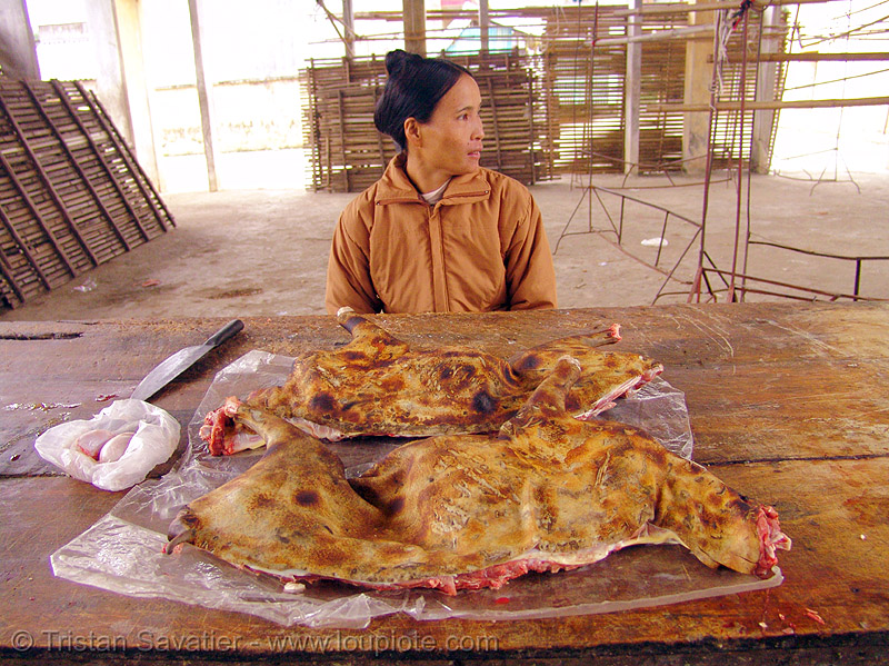 woman selling dog meat (vietnam), butcher, carcass, cooked dog, dog meat, food dog, meat market, raw meat