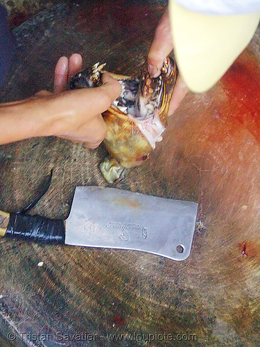 dog meat - cutting jaw off - thịt chó - vietnam, butcher knife, carcass, cleaver, dead dog, dog head, dog meat, food dog, raw meat