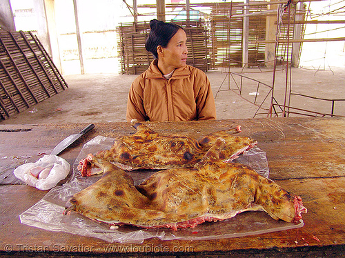 woman selling dog meat (vietnam), butcher, carcass, cooked dog, food dog, market, meat market, people, raw, raw meat