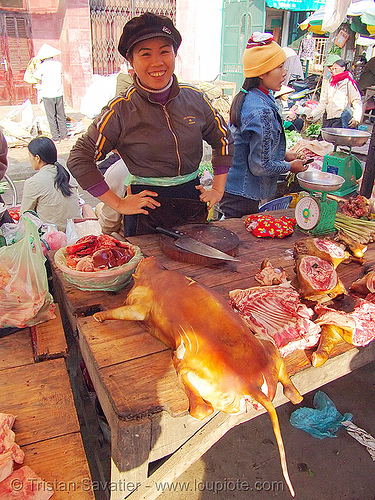 woman selling dog meat (vietnam), asian woman, butcher knife, carcass, dead dog, dog meat, dogs, food dog, lang sơn, meat market, raw meat, street market, tail, women